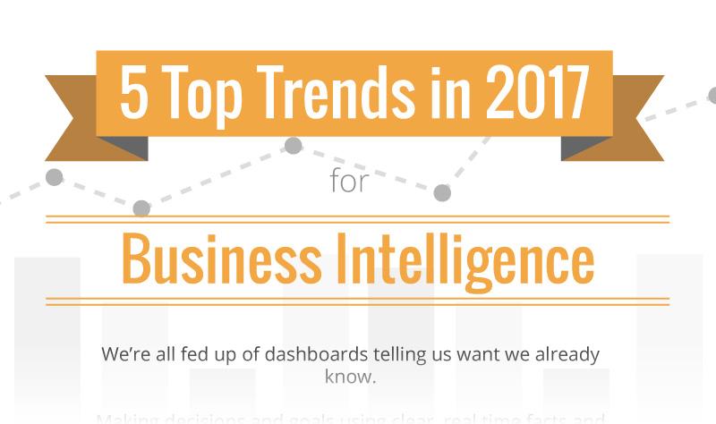 Top 5 Business Intelligence Trends 2017 [Infographic]